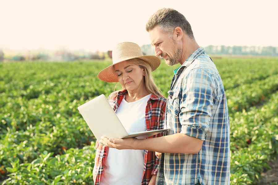 What Is Farm Accounting Software?