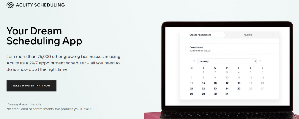 Acuity Scheduling by Squarespace Review